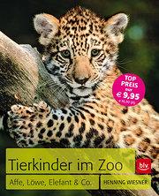 Tierkinder im Zoo