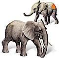 Ravensburger tiptoi 2-teiliges Set Spielfiguren Afrikanische Elefantenfamilie mit Elefantenbulle & Elefantenkalb
